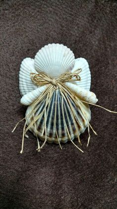 Items similar to Seashell Angel ornament on Etsy Seashell Ornaments, Seashell Art, Seashell Crafts, Angel Ornaments, Seashell Projects, Driftwood Crafts, Sea Crafts, Angel Crafts, Christmas Ornaments To Make