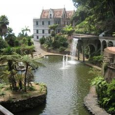 Pixdaus...  Jardim Botanico, Funchal, Madeira By: EmilVoice