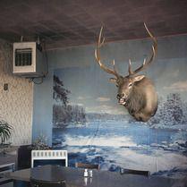Bryan Schutmaat Photography - Western Frieze