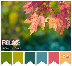 Inspire Sweetness!: Foilage - Color Palette