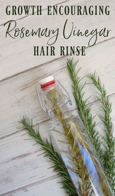 Rosemary is one of the most popular herbs when it comes to hair care. It's popular for encouraging hair growth and for dealing with dandruff which is why it's perfect in this growth encouraging rosemary vinegar hair rinse! Vinegar Hair Rinse, Vinegar For Hair, Diy Hair Rinse, Hair Care Oil, Diy Hair Care, Hair Oil, Leave In, Natural Hair Care, Natural Hair Styles
