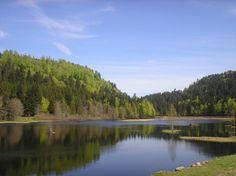 Le lac de Lispach, situé dans les Vosges non loin de Colmar, offre une vue assez typique des grands lacs du Canada. A proximité de La Bresse, la commune la plus proche du lac, se trouvait auparavant une mine de cuivre. On peut profiter d'une promenade aménagée autour du lac, et s'adonner à la pêche (réglementée).