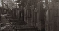 ALTER FRIEDHOF (Old Cemetery). Germany, Offenbach an Main. November 2014.