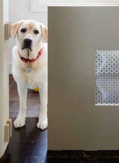 chic pet gate.  photo:  eric roth.