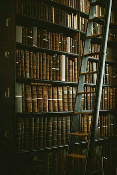 ireland part dublin Trinity College Library, The Long Hall by Beth Kirby Library Ladder, Library Books, Reading Books, Long Hall, Local Milk, Beautiful Library, Dream Library, College Library, Slytherin Aesthetic