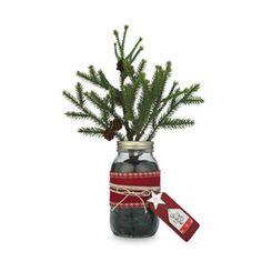 Cedar Lodge Mason Jar Planter