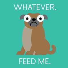 If Animals and Objects Could Talk - David Olenick