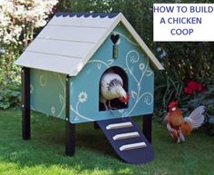 How to Build a Simple Chicken CoopBuilding a backyard chicken coop will allow you to harvest organic eggs, raise chickens for meat, recycle your food scraps and...
