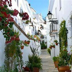 my fav place in spain Villa Frigiliana Nerja Spain Mijas Spain, Andalucia Spain, Places To Travel, Places To Go, Travel Destinations, Magic Places, Spanish Garden, Spanish Courtyard, Road Trip Planner