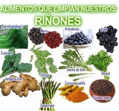 Alimentos que limpian nuestros riñones