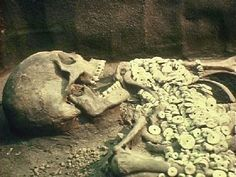 A giant mystery: 18 strange giant skeletons found in Wisconsin - Yahoo Image Search Results Giant Skeletons Found, Burlington Wisconsin, Nephilim Giants, Human Oddities, Alien Creatures, Ancient Aliens, Ancient History, Weird World, Paranormal