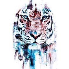 Tattoo. Sketch. Colors. Tiger.