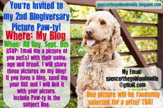 """You're invited to my 2nd Blogiversary Picture Paw-ty!  Where: My Blog When: All Day, September 9th, 2015 RSVP: Email (spencerthegoldendoodle@gmail.com) me a picture of you pet(s) with their name, age and breed. Include """"Paw-ty"""" in the subject line. I will be sharing those pictures on my blog. If you have a pet blog or pet website include you URL and I will link you picture. Prize: One picture will be randomly selected! More TBA! For more information click on the photo!"""
