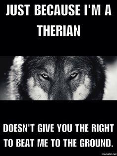 Stop Therian hate! Stop being judgmental, everyone has feelings.