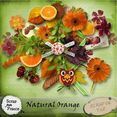 Kit Natural Orange de Scrap de yas