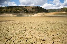 Tagus river at risk of drying up completely Climate change, dams and diversion bring Iberian peninsula's longest river, on which millions depend, to brink of collapse