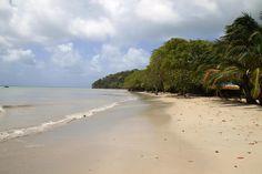 Playa Sur Oeste - Isla de Providencia, es la playa más extensa e importante de la isla.  http://www.sanandresislas.com.co/playa-sur-oeste-isla-de-providencia