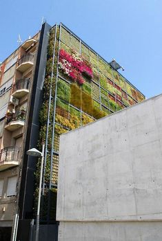 Vertical garden in Spain.  - I heard they want to do this in Portland,OR so it shades in the summer... and when the plants die in the winter it lets in light.... saves energy!