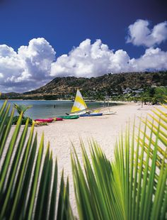 Mamora Beach, Antigua where they have 366 beaches, one for each day +1,  love to go back sometime
