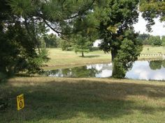 10 Premier Home Sites in Huntington Creek Subdivision; 5 are Lake Front/View Lots; Selling Thursday, November 14th, 2013 at 5:07 PM. Located off HWY 95 in Calvert City, KY. Auction held at Machinist Union Hall at 4658 US HWY 62, Calvert City, KY