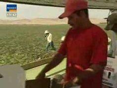 Wasser für Nahrung - Künstliche Bewässerung und ihre Folgen