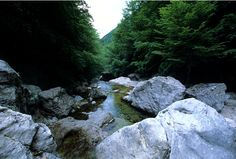 National Park Abruzzo, Lazio and Molise - torrent.