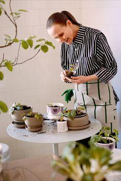 Der rustikale Marimekko Oiva Blumentopf 13.5 cm Terra F/S 20 ist Teil einer limitierten Auflage für das Frühjahr 2020. Seine raue Oberfläche bringt einen rustikalen Touch in die eigenen vier Wände. Schlicht und pragmatisch fügt sich der Blumentopf mit Untersetzer harmonisch in jeden Einrichtungsstil ein. Über den Untersetzer können die Pflanzen optimal mit dem lebensspendenden Nass versorgt werden. #found4you #marimekko #marimekkooiva #blumentopf #marimekkoFS20 #design Marimekko, Design, Coaster, Make A Donation, Rustic, Plants, Flowers
