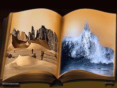 """foxpapa:  LIBROMANIA LIBRIDINOSA   """"Books are a uniquely portable magic."""""""