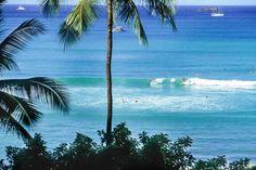 ★★★ Imperial Hawaii Resort at Waikiki, Honolulu, USA Hawaii Resorts, Hotels And Resorts, Queen Kapiolani Hotel, Honolulu Zoo, Waikiki Beach, Best Location, Summer Vibes, Aesthetic Wallpapers, Surfing