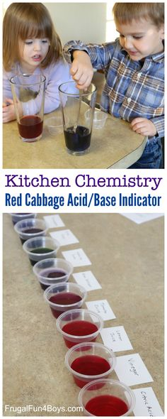 Kitchen Chemistry for Kids: Test for Acids and Bases with Red Cabbage
