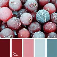 Wine Color Palette - Bing Images
