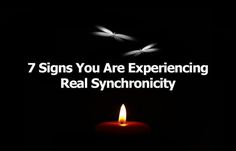 By Andrea Schulman   Raise Your Vibration Today Synchronicity is a term coined…