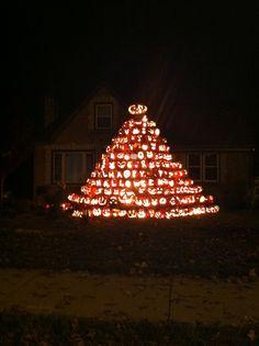 Halloween pumpkin tree in Cudahy, WI. Pumpkin Tree, American Religion, Halloween Pumpkins, Neon Signs, Traditional, Halloween Gourds
