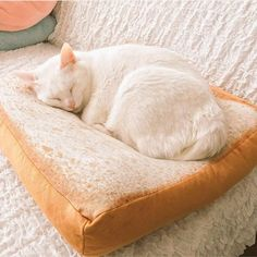 I Love Toasty Pet Comfy Cushion