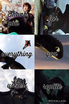 Toothless Dragon, Hiccup And Toothless, Hiccup And Astrid, Dragon 2, Dragon Tail, Httyd Dragons, Dreamworks Dragons, Cute Dragons, Disney And Dreamworks