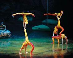 Go to a Cirque de Soleil show