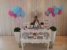 FESTA CLEAN Frozen