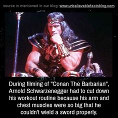 Austrian Alps: Understanding Arnoldu0027s Arms Workout | Pinterest | Arm  Workouts, Arnold Schwarzenegger And Workout