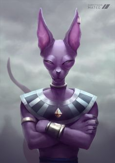 Beerus- Dragon Ball Z https://www.facebook.com/ChristiaanMateoC