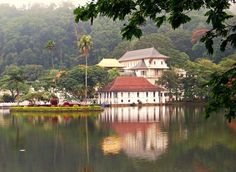 You can keep yourself busy in Kandy for a week easily, or just fly through for the Temple of the Tooth.