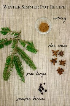 Winter Simmer Pot: This simmer pot has a wintry scent that is perfect for the holidays! 1 teaspoon nutmeg (or grate a whole nutmeg) 5 star anise pine twigs 9 juniper berries (gently crush before adding to the pot to release the scent) Note: Cut a few twigs off your Christmas tree for this simmer pot; it's the perfect way to keep your home smelling like Christmas even after your tree is gone!