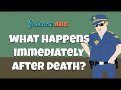 Rigor Mortis, Livor Mortis, Pallor Mortis, Algor Mortis: Forensic Science Explains Stages of Death - YouTube