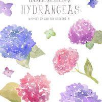 watercolor hydrangeas clip art | angiemakes.com