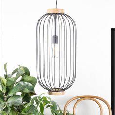 oval shaped pendant light with black metal bars connected to the top and bottom wood finish