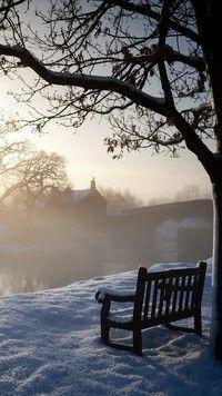 Ośnieżona ławka pod drzewem
