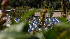 Narcissus Garden, de Yayoi Kusama, no Inhotim, em Brumadinho, Minas Gerais.