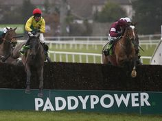 Don Poli on Gold Cup trail  https://www.racingvalue.com/don-poli-on-gold-cup-trail/