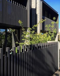 Jackson Clements Burrows (JCB) photo by Sun spilt morning Fence Gate Design, Modern Fence Design, Balcony Railing Design, House Gate Design, Facade Design, Tor Design, Boundary Walls, Steel Fence, Front Fence