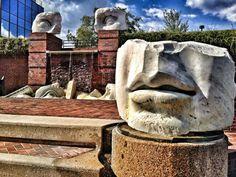 Springfield, VA - ©LensofLouis ©LS Taylor; Website:  http://i-shot-it.com/Photos/lens_of_Louis ; Instagram: @1lens ; Facebook: #LensofLouis