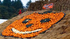 Local Pumpkin Patches to visit near PDX
